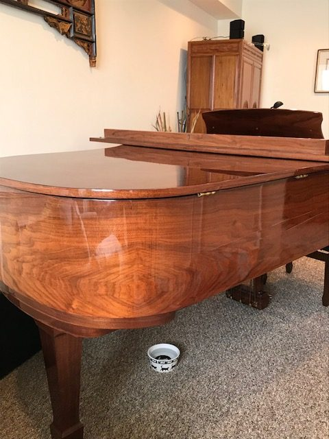 Otto Altenburg Grand Piano Walnut